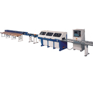 Omga T 2020 / 2030 NC Optimizing Saw System